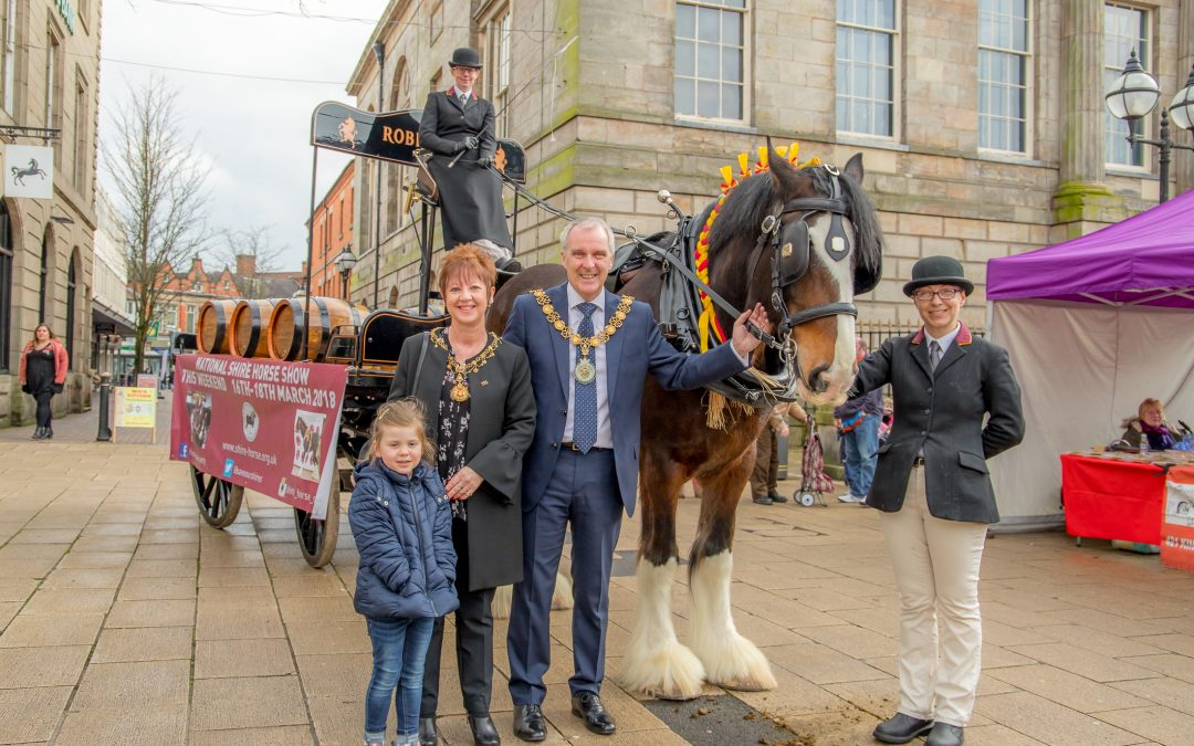 Shire horse and dray join shoppers at Stafford Farmers' Market ahead of big Shire horse show
