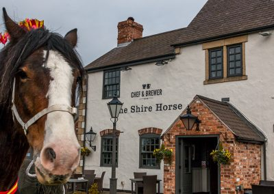 The Shire Horse Society